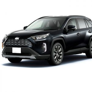 дневные ходовые огни новая Toyota RAV4